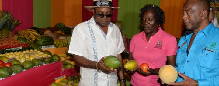 Denbigh Agricultural Show